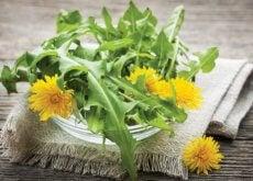 piante-medicinali diuretici naturali