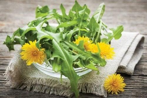 fiore di giamaica per perdita di peso + preparazione