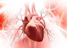 cuore sindrome cuore infranto