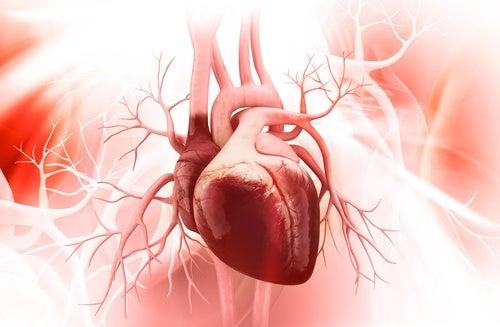 8 cattive abitudini per la salute del cuore
