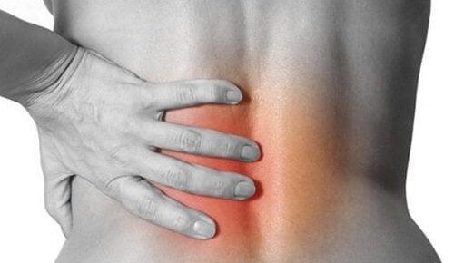 Infiammazione schiena