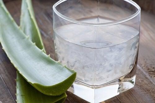 Foglie di aloe e succo