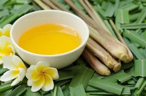 Olio di citronella: un ottimo repellente per gli insetti