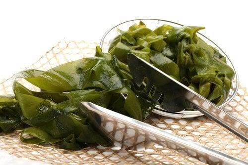 alghe per la tiroide debilitata