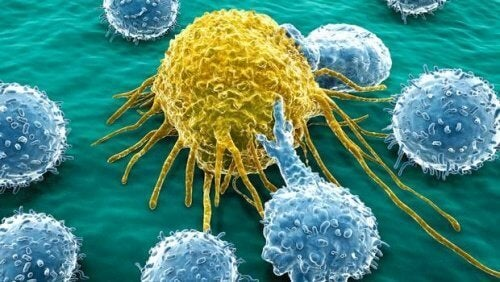 Creata molecola in grado di trattare il tumore alle ovaie e al pancreas