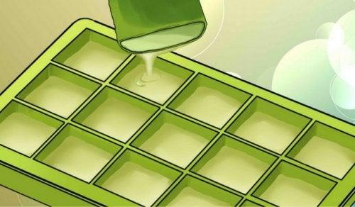 Congelare l'aloe vera: tutti i benefici