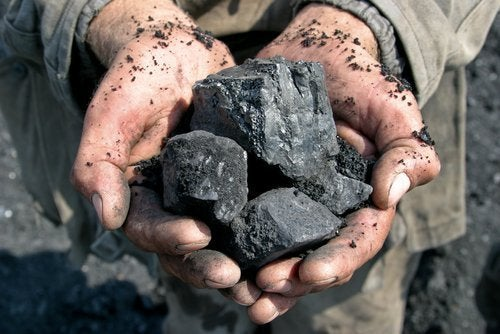 carbone-per-il-giardino sorprendenti usi del carbone