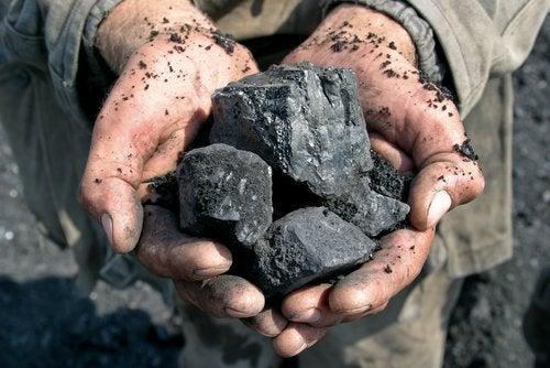 carbone-per-il-giardino