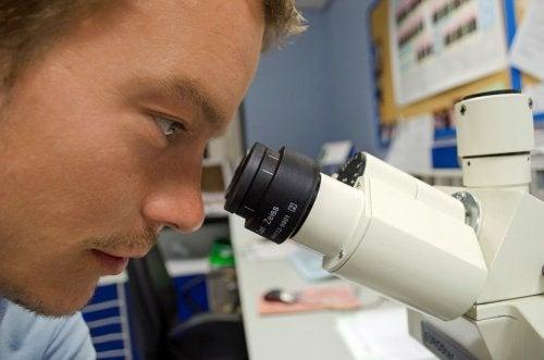 Medico ricercatore