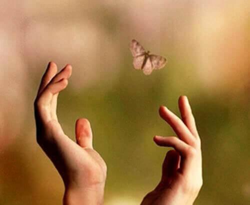 mani-e-farfalla