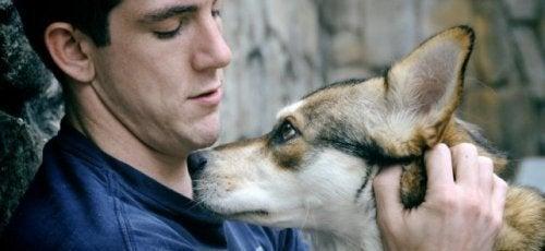 un-cane-per-combattere-la-nostalgia