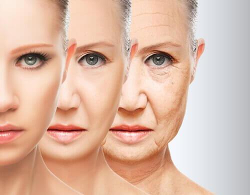 Fasi di invecchiamento della donna