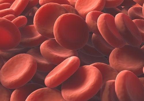 Aumentare il numero dei globuli rossi in modo naturale