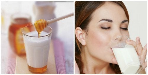 Latte e miele 7 motivi per berlo prima di andare a dormire