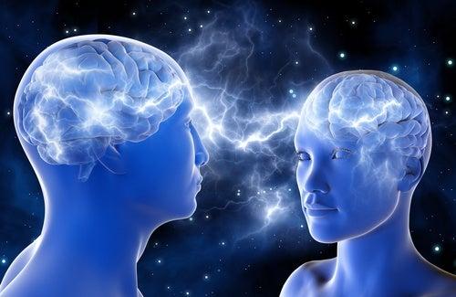 Corteccia visiva primaria: area del cervello che matura fino a 36 anni