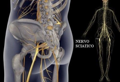 Esercizi per dolori al nervo sciatico, bacino e schiena