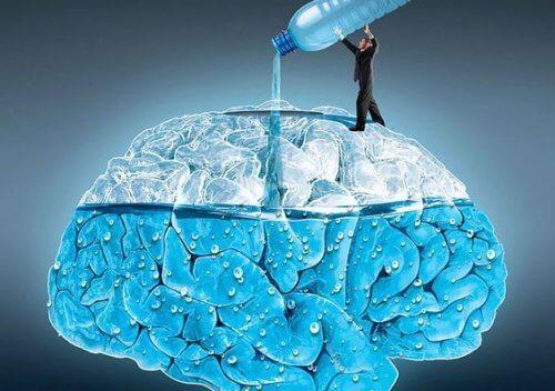Bere acqua: 5 effetti sul cervello