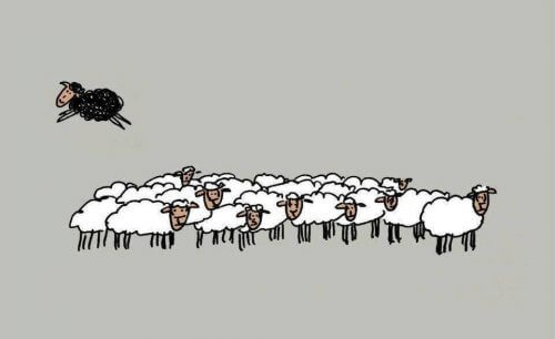 """Essere una """"pecora nera"""" : 4 motivi per cui è un vantaggio"""