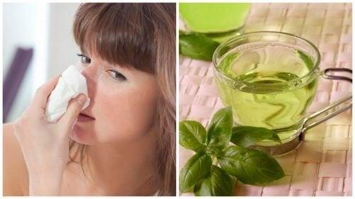 5 rimedi naturali contro il naso chiuso