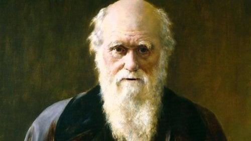 Darwin e l'evoluzione