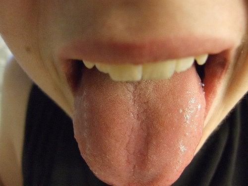 la lingua