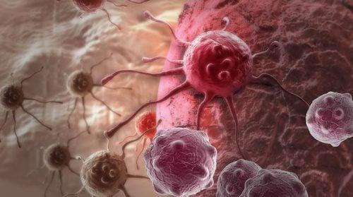 Un nuovo studio suggerisce la possibile causa principale del cancro