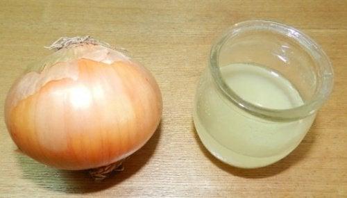 la cipolla e il bicchiere