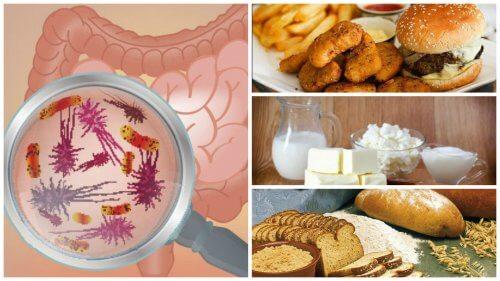 Alimenti che danno problemi all'intestino, eccone 7