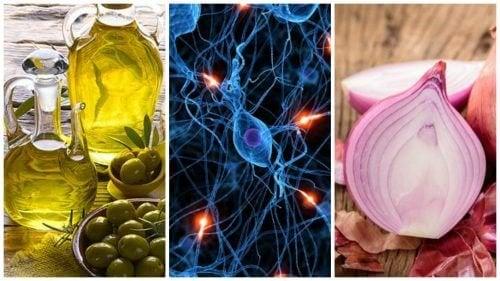 8 alimenti che aiutano a mantenere sano il cervello
