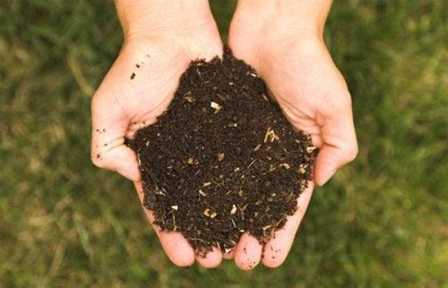 Terriccio da materiale organico