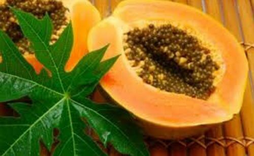 13 benefici delle foglie di papaya