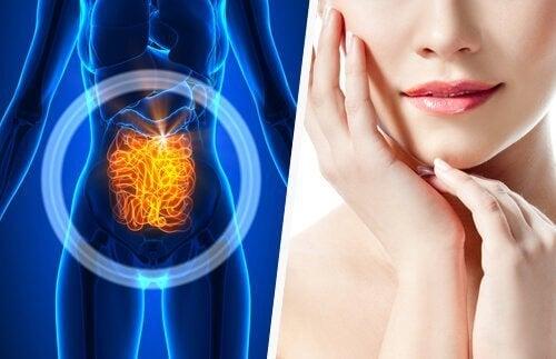 Prendersi cura dell'intestino
