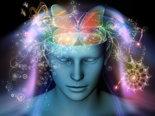 Neurogenesi: 5 semplici abitudini che rigenerano i neuroni