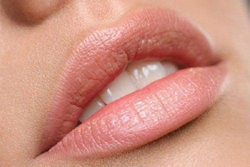 labbra e olio di argan