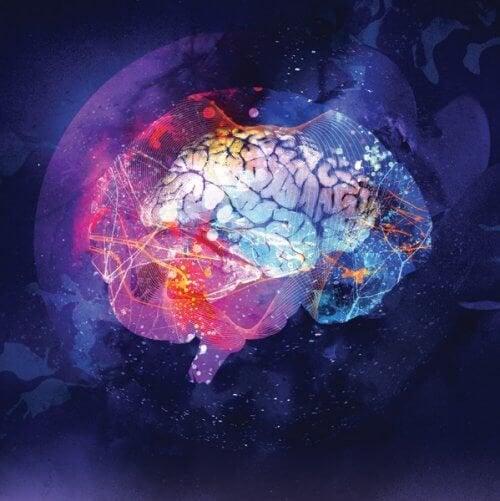 Mappatura del cervello