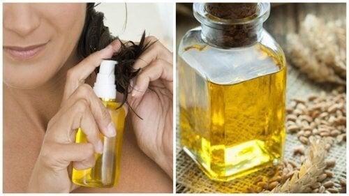 Olio di germe di grano: 6 benefici per i capelli
