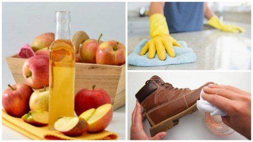 I 7 migliori usi domestici dell'aceto di mele