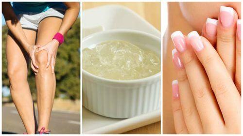 11 proprietà della gelatina neutra