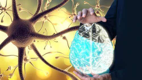 """Nervo vago: come """"svegliarlo"""" per un benessere integrale"""