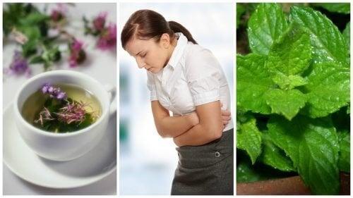 Alleviare la sindrome dell'intestino irritabile con 5 erbe