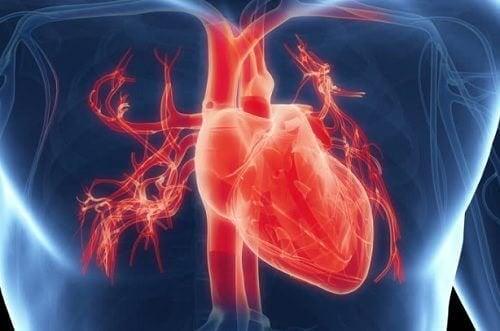 7 sintomi di malfunzionamento del cuore