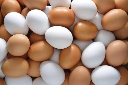 maschere per capelli con proteine di uova