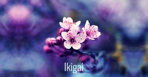 7 parole giapponesi per favorire la crescita personale