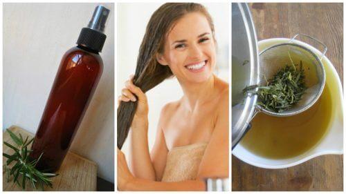 Come preparare un balsamo alle erbe e aceto per capelli più forti
