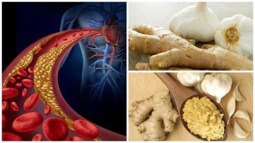 Aglio e zenzero per ipertensione e colesterolo alto