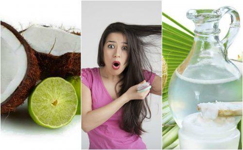 Acqua di cocco e limone contro la caduta dei capelli