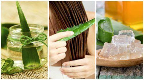 5 trattamenti a base di aloe vera per capelli più forti