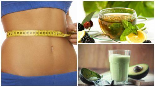 4 ricette a base di tè verde per bruciare i grassi