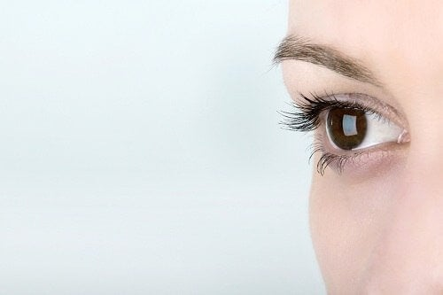 Conoscere i nostri occhi