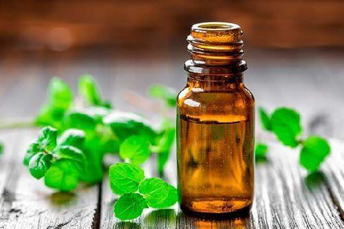 Rilassare i muscoli con l'olio di menta